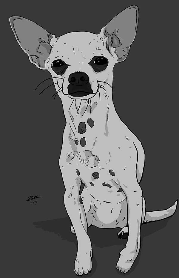 I can draw your pet