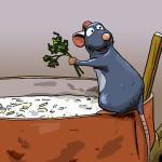 Ratatouille-resized