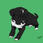 Dexter Puppy