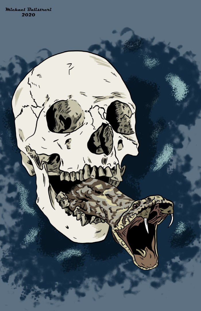 A skull with a snake in its mouth.