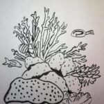 Inktober Day 20 Coral